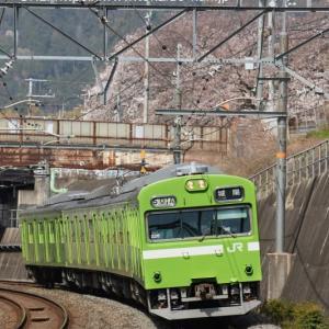 2021年 桜+鉄道の写真まとめ