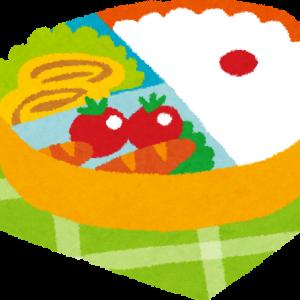 【画像あり】藤井七段の昼食(980円)ガチでうまそう!!