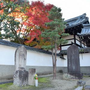 東福寺(京都市)の紅葉写真