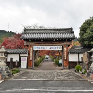 西教寺(滋賀県大津市)の写真と御朱印①