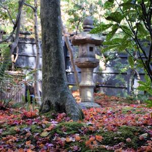 滝口寺(京都市)の写真と御朱印