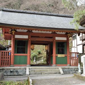 愛宕念仏寺(京都市)の写真と御朱印