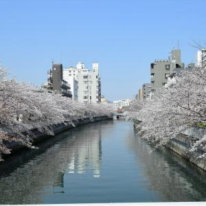 薬研堀不動院(東京都中央区)の写真と御朱印