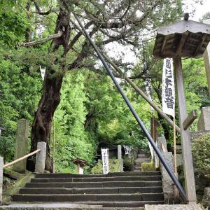 杉本寺(神奈川県鎌倉市)の写真と御朱印
