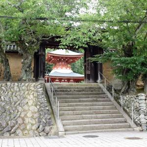 慈尊院(和歌山県九度山町)の写真と御朱印