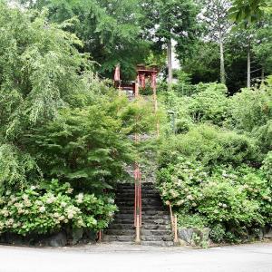 勝利寺(和歌山県九度山町)の写真と御朱印
