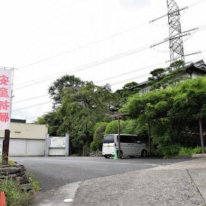 子安地蔵寺(和歌山県橋本市)の写真と御朱印
