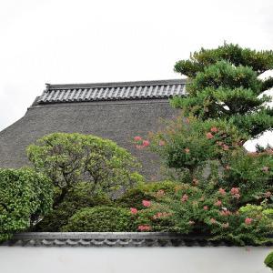 金剛寺(奈良県五條市)の写真と御朱印