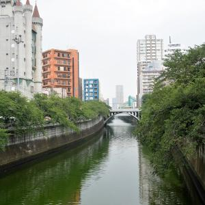 大圓寺(東京都目黒区)の写真と御朱印