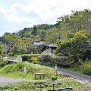 聖林寺(奈良県桜井市)の写真と御朱印