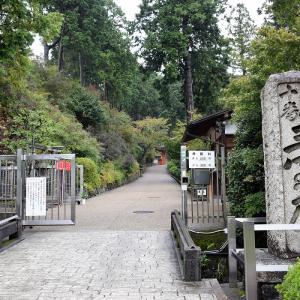 三室戸寺(京都府宇治市)の写真と御朱印