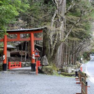 貴船神社(京都市左京区)の写真と御朱印③