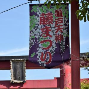 亀戸天神社(東京都江東区)のフジ写真