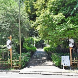 赤坂氷川神社(東京都港区)の写真と御朱印②