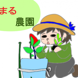 まる農園5
