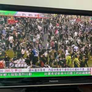 今朝の香港。