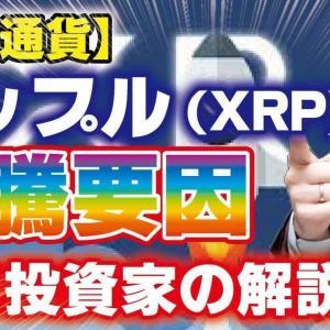 【仮想通貨】リップル(XRP)の高騰要因 大口投資家の解説 ビットコイン イーサリアム【投資家プロジェクト億り人さとし】