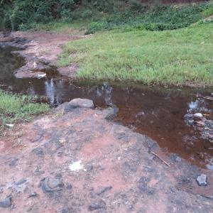 タンザニア北部 テンパズル