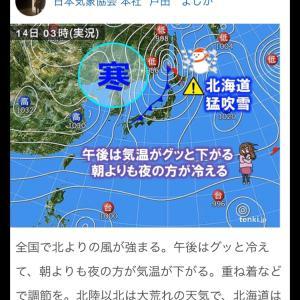 北風にご注意!です❣️