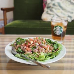 フレッシュサルサの肉サラダごはん