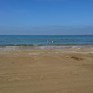中部地方で海水浴ができるキャンプ場