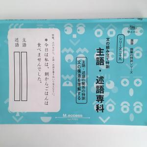 ◇小学2年生 国語 主語・述語の衝撃!☆たった30分で終了