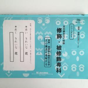 ◇サイパーシリーズ30 修飾・被修飾専科 終わりました☆文の組み立て特訓