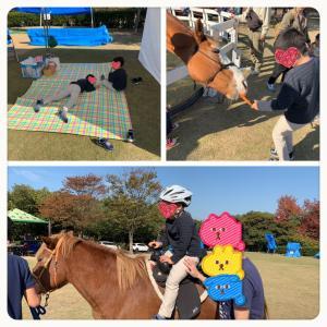 障害児と馬のふれあい。