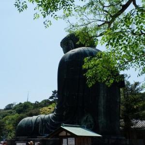 *:.鎌倉散歩~葛原岡・大仏ハイキング~【2】.:*