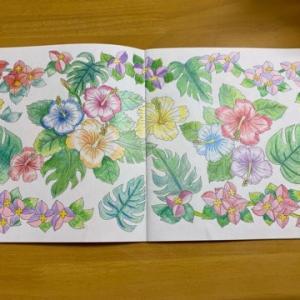 【塗り絵】DAISO癒しの塗り絵~花の国~から