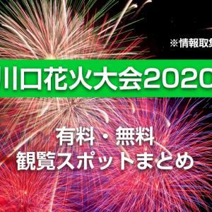 川口花火大会2020(10月3日)穴場スポット | 昨年観覧した地元民情報