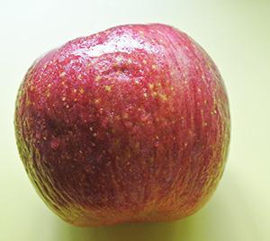お下がりリンゴ