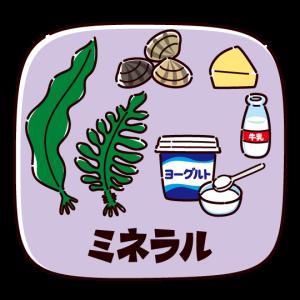ミネラルを多く含む食品のイラスト(2カット)