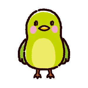 緑色の鳥のイラスト(3カット)