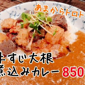牛すじ大根煮込みカレー(850円)