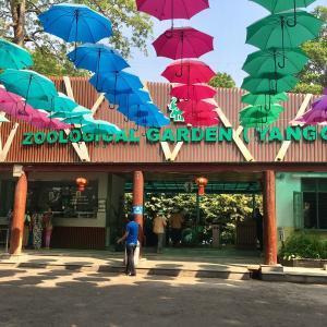 【ヤンゴン】動物園好きも満足!ヤンゴン動物園に行ってみよう|ミャンマー|ひとり旅|2019