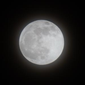 「今ここ」エクササイズ【23】~満月
