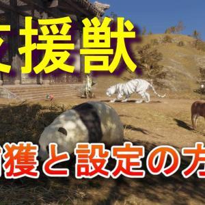 真・三國無双8【攻略】支援獣の捕まえ方と戦闘へ連れていく方法(初心者向け)