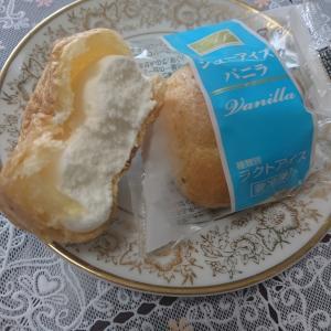 20円のシューアイス