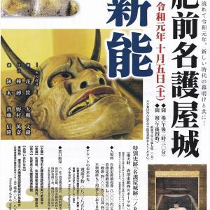 福姫日記 3年に1度の薪能