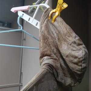 パーカー専用の洗濯ハンガーは高すぎる。200円で2枚のパーカーを干す方法