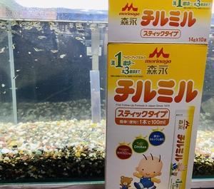 稚魚グッピーの餌に粉ミルクをあげてみたら、