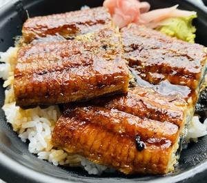 ウナ丼600円 vs  トントン丼600円