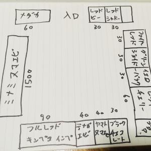 エビ吉の水槽部屋の配置と種類決めました。笑笑