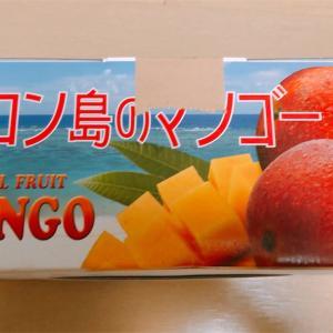 【ふるさと納税】マンゴー!夢だった食べ方