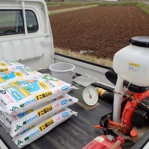 動散で一発肥料を追加投入しました。