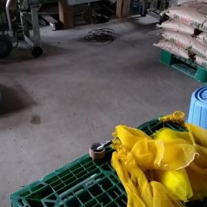 1町歩分の浸種の準備と、鉄コーティング資材を受け取りに行きました。