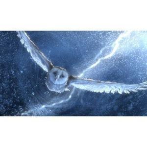映画 無料 動画 ガフールの伝説 キャスト:ジム・スタージェス、ライアン・クワンテン、アビー・コーニッシュ、ヒューゴ・ウィーヴィング、ヘレン・ミレン、ジェフリー・ラッシュ Legend of the Guardians: The Owls of Ga'Hoole movie free<br />