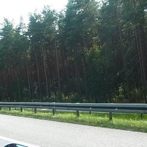 """ドイツのアウトバーン速度無制限区域をハーレータンデムで""""おとなしく""""ぶっ飛ばす"""