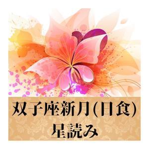 双子座新月(日食)~我慢、我慢の昭和のド根性よ、さようなら(笑)①